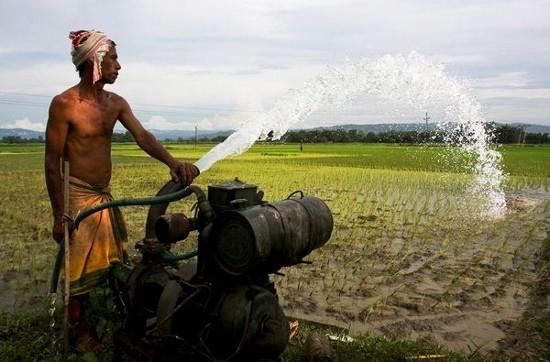 Bihar 現有的柴油機(Photograph by AP/Anupam Nath)