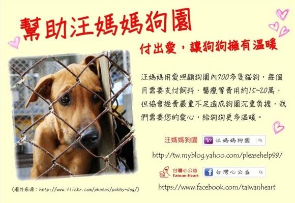 「台灣心公益」於2013年1月15日至3月17日期間,在flyingV設置「流浪狗不再流浪,流浪狗家園計畫」,共募得133400元。