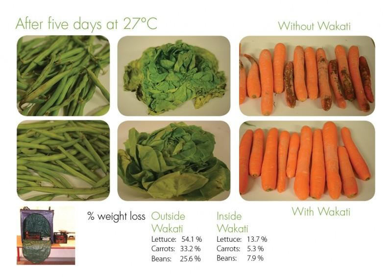 ↑實驗結果顯示,在室溫27度的環境將蔬果放置5天,Wakati能使蔬果不腐爛