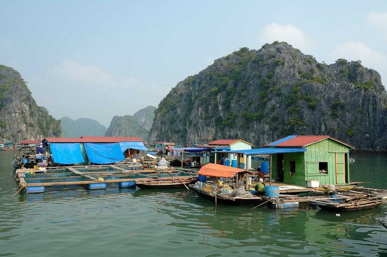 fishingvillage_halongbay_vietnam_pixinn-net
