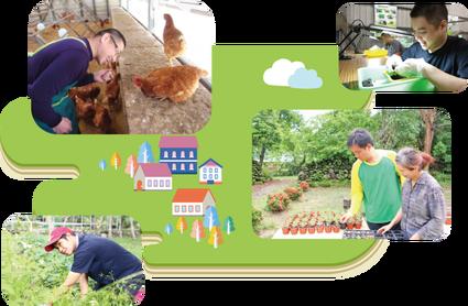 黎明教養院希望在壽豐鄉共和村,2.5 公頃的農地上建立規劃建置四生一體(生態、生產、生活、生命)的黎明喜樂園,助成人肯納兒、身心障礙者自力「耕」生。圖片來源/黎明教養院官網