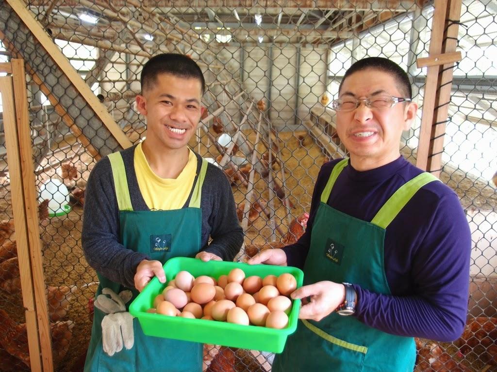黎明教養院以蛋雞飼養、販賣讓肯納兒自力「耕」生。圖片來源/媽媽熊買好物。