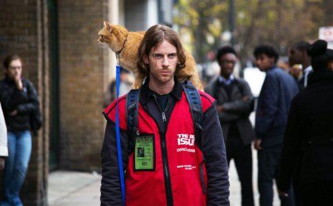 A Street Cat Named Bob. Luke Treadaway (James), Bob. Big Issue S