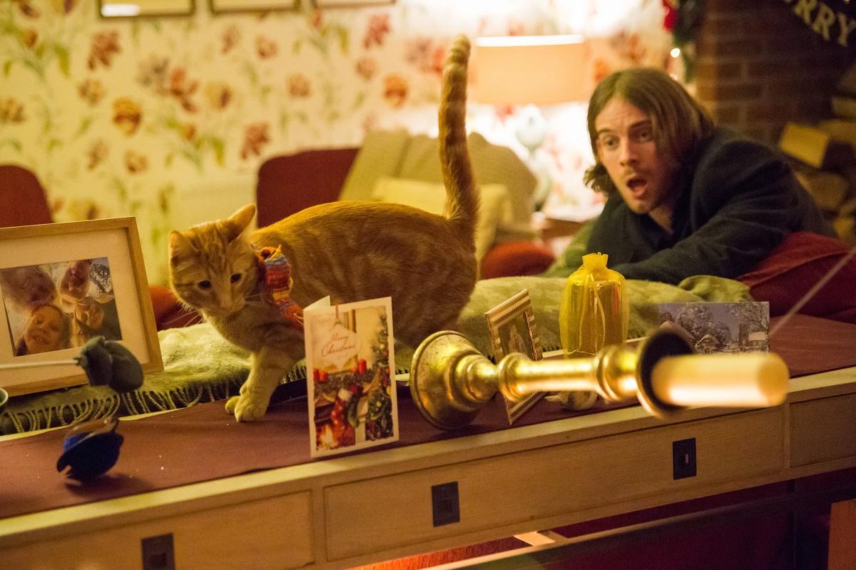 A Street Cat Named Bob. Luke Treadaway (James), Bob. Rickmanswor